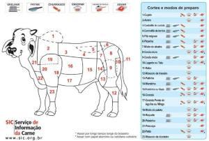 boi em carnes  explicadas